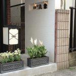 横浜・中華街のパン屋「のり蔵」はお土産にもおすすめ!