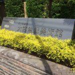 さいたま市大宮盆栽美術館とその周辺は1日観光が楽しめるエリアだった。